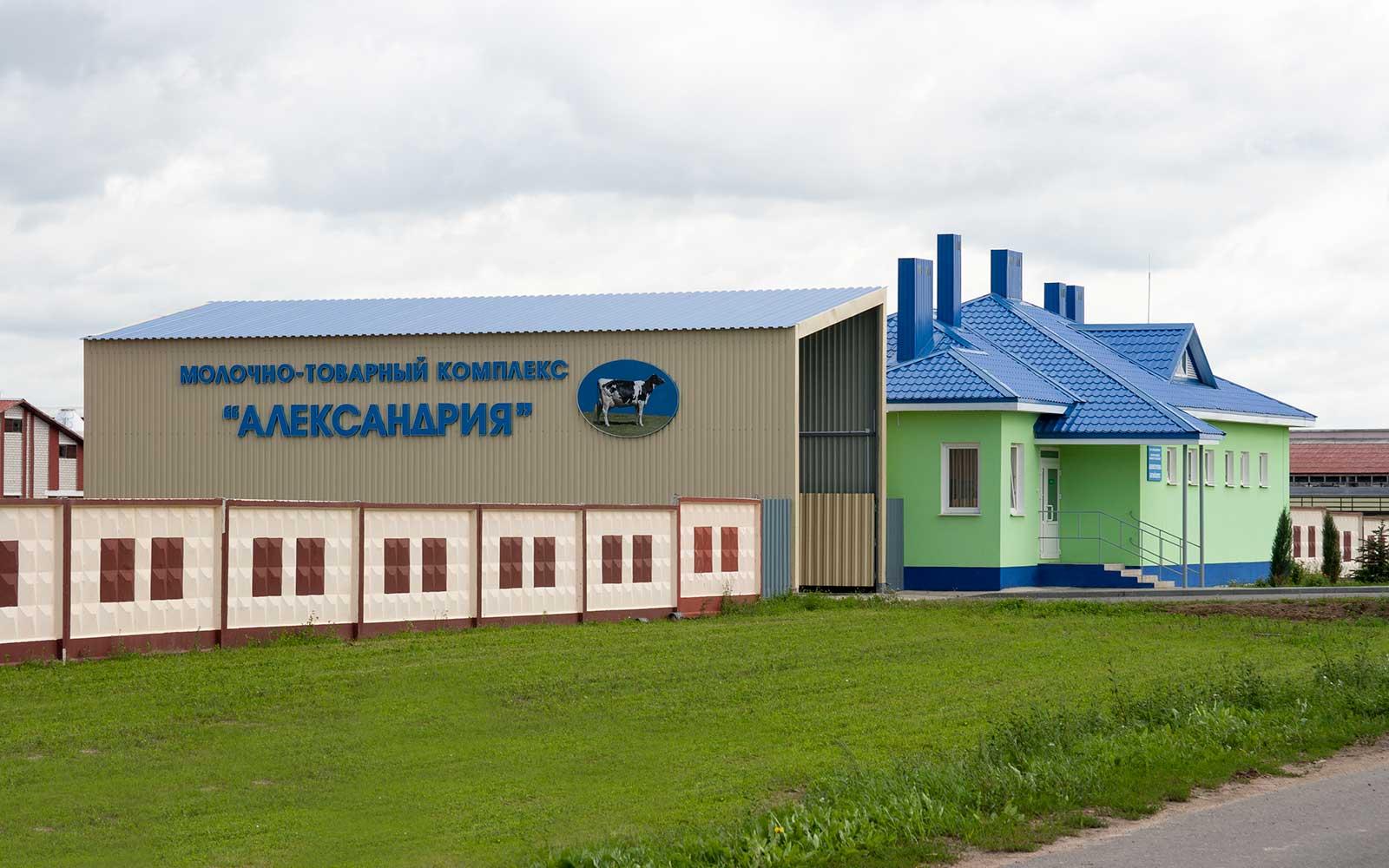 Картинки по запросу ОАО АЛЕКСАНДРИЙСКОЕ
